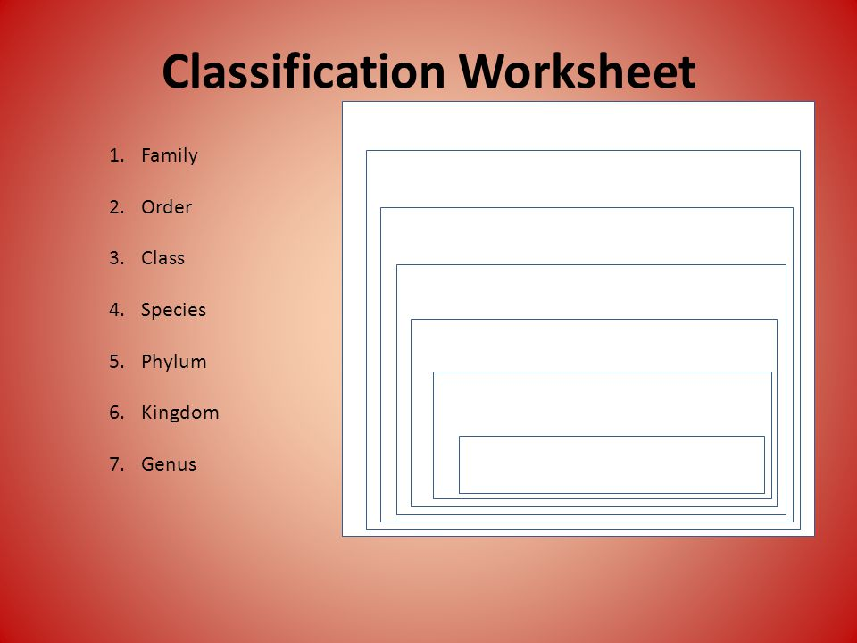 Classification Worksheet 1.Family 2.Order 3.Class 4.Species 5.Phylum 6.Kingdom 7.Genus