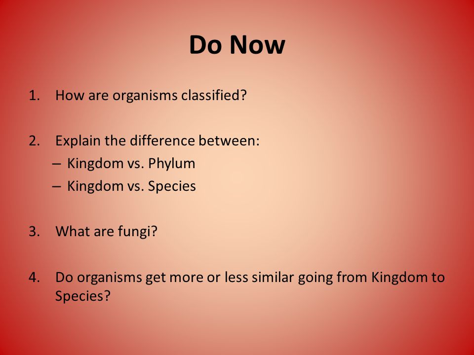 Do Now 1.How are organisms classified. 2.Explain the difference between: – Kingdom vs.