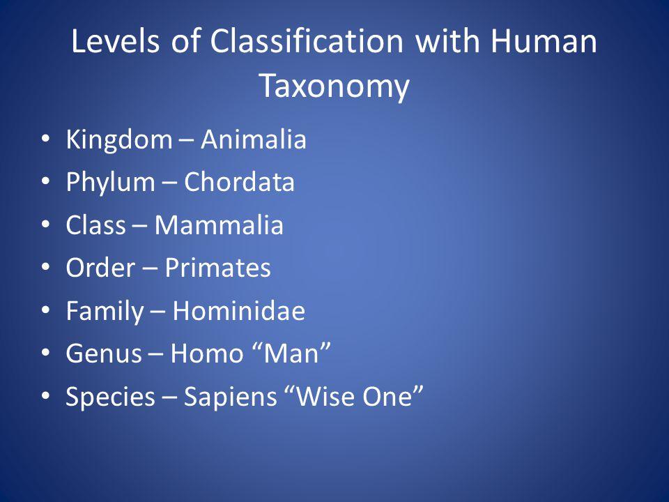Levels of Classification with Human Taxonomy Kingdom – Animalia Phylum – Chordata Class – Mammalia Order – Primates Family – Hominidae Genus – Homo Man Species – Sapiens Wise One