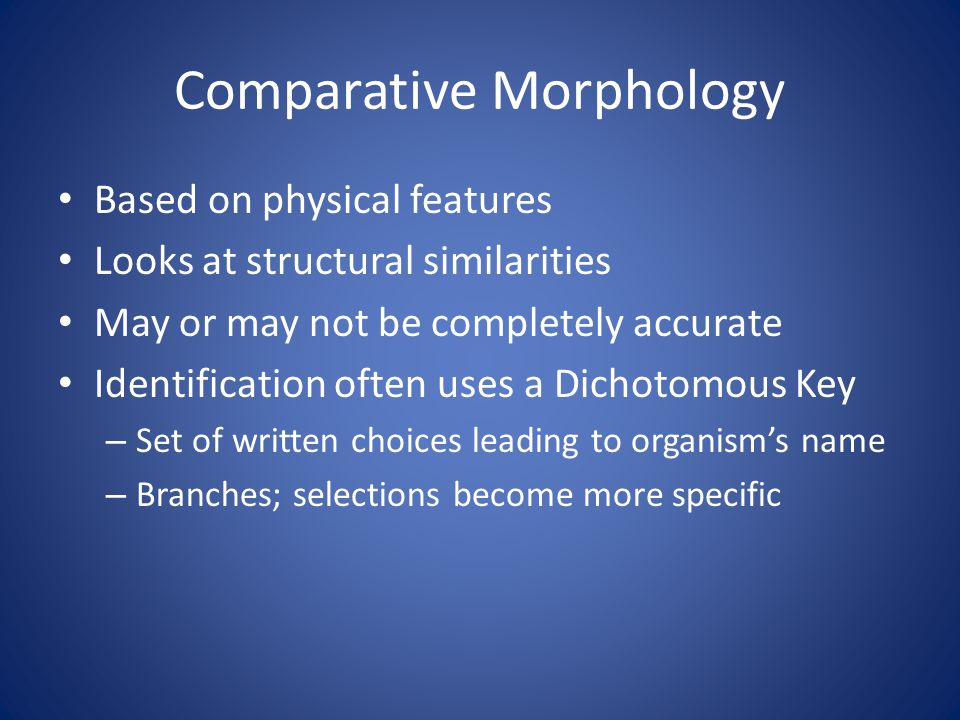 Comparative Morphology Based on physical features Looks at structural similarities May or may not be completely accurate Identification often uses a Dichotomous Key – Set of written choices leading to organism's name – Branches; selections become more specific