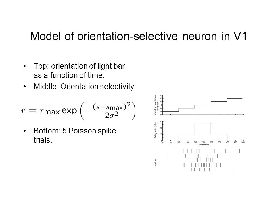 Model of orientation-selective neuron in V1 Top: orientation of light bar as a function of time.