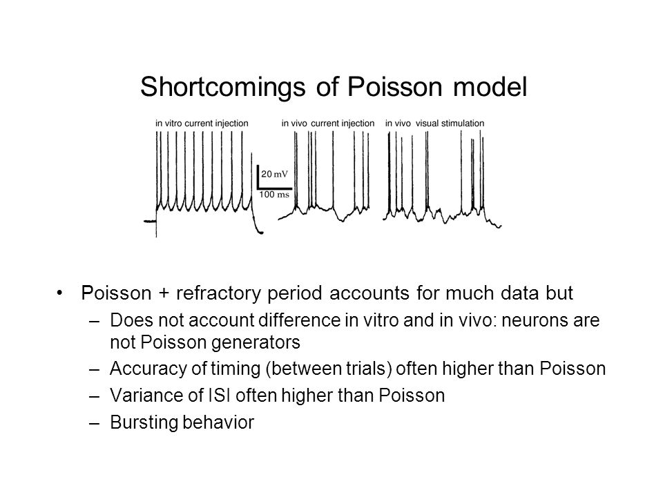 Shortcomings of Poisson model Poisson + refractory period accounts for much data but –Does not account difference in vitro and in vivo: neurons are not Poisson generators –Accuracy of timing (between trials) often higher than Poisson –Variance of ISI often higher than Poisson –Bursting behavior