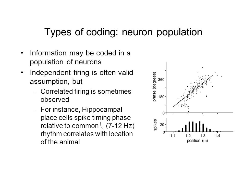 Types of coding: neuron population Information may be coded in a population of neurons Independent firing is often valid assumption, but –Correlated firing is sometimes observed –For instance, Hippocampal place cells spike timing phase relative to common  (7-12 Hz) rhythm correlates with location of the animal