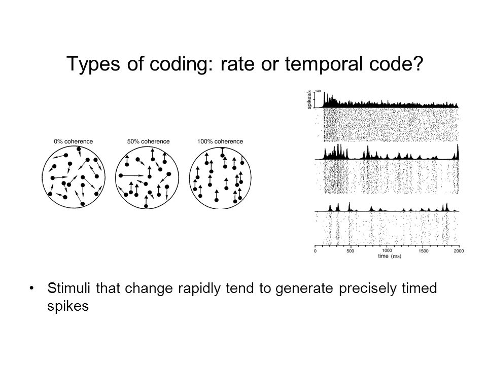 Types of coding: rate or temporal code.