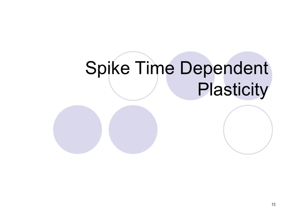 Spike Time Dependent Plasticity 15