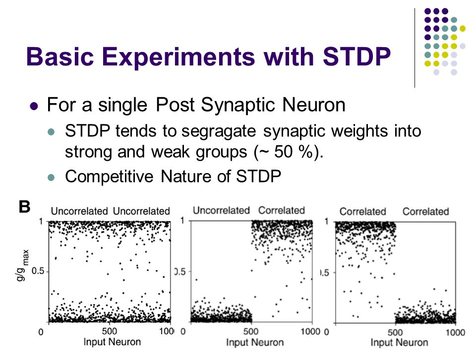 Basic Experiments with STDP For a single Post Synaptic Neuron STDP tends to segragate synaptic weights into strong and weak groups (~ 50 %).