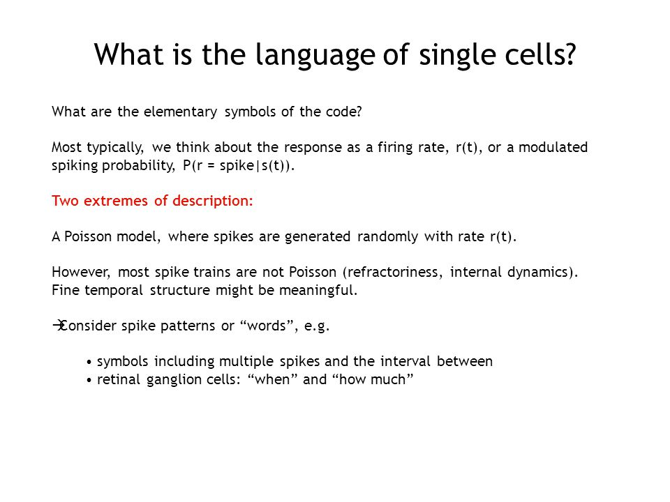 What is the language of single cells. What are the elementary symbols of the code.