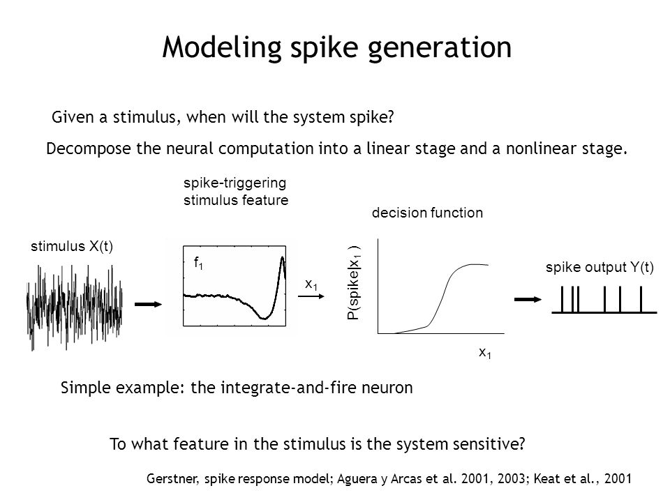 spike-triggering stimulus feature stimulus X(t) decision function spike output Y(t) x1x1 f1f1 P(spike|x 1 ) x1x1 Decompose the neural computation into a linear stage and a nonlinear stage.