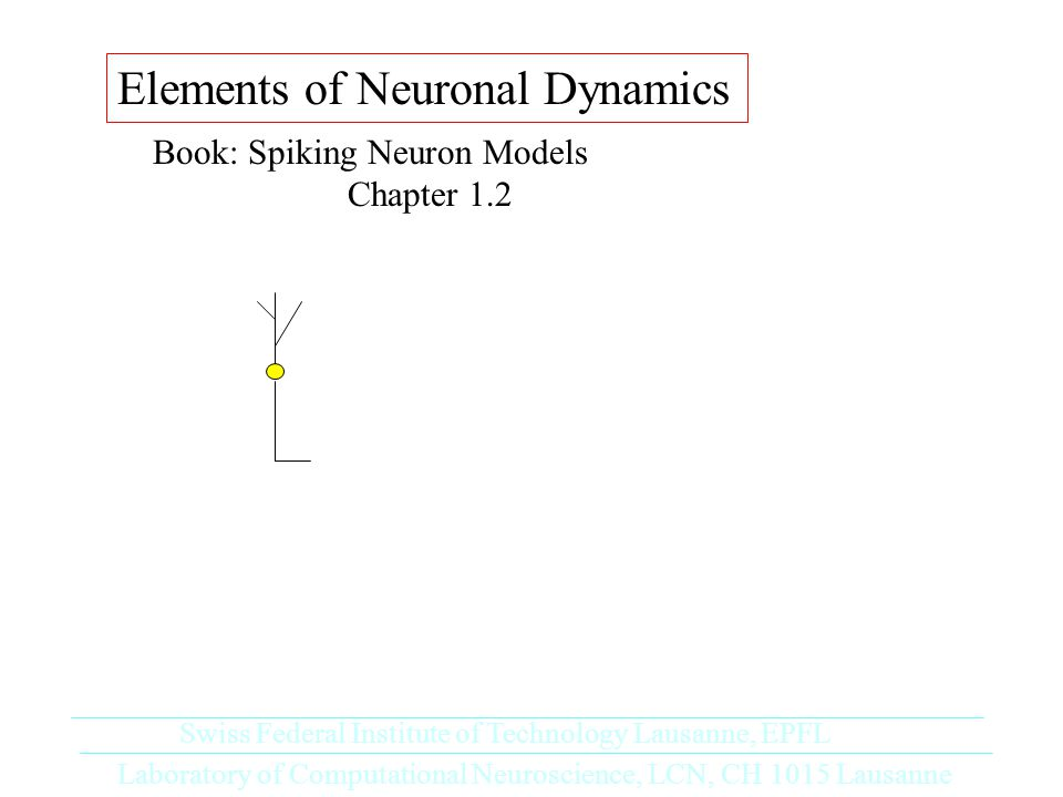 Elements of Neuronal Dynamics Book: Spiking Neuron Models Chapter 1.2 Laboratory of Computational Neuroscience, LCN, CH 1015 Lausanne Swiss Federal Institute of Technology Lausanne, EPFL