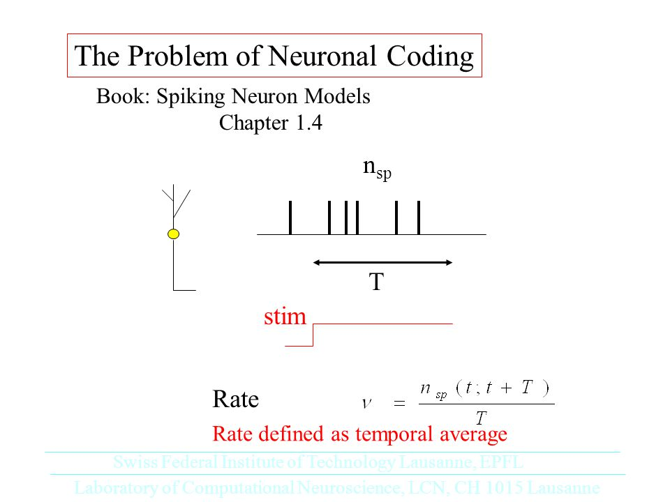 The Problem of Neuronal Coding Book: Spiking Neuron Models Chapter 1.4 Laboratory of Computational Neuroscience, LCN, CH 1015 Lausanne Swiss Federal Institute of Technology Lausanne, EPFL stim T n sp Rate Rate defined as temporal average