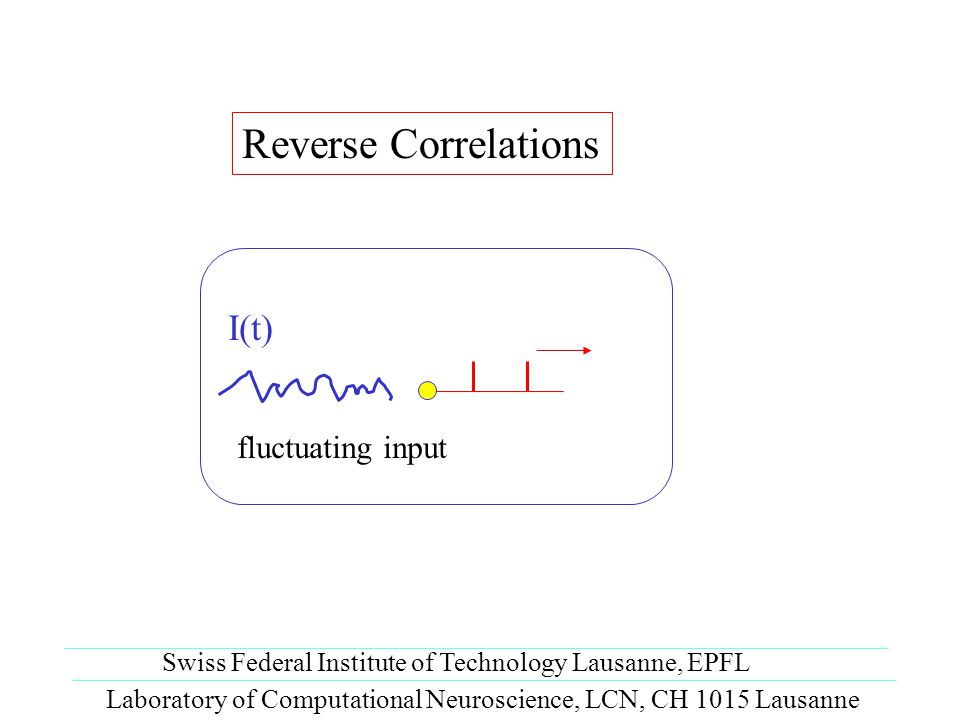 Reverse Correlations Laboratory of Computational Neuroscience, LCN, CH 1015 Lausanne Swiss Federal Institute of Technology Lausanne, EPFL fluctuating input I(t)