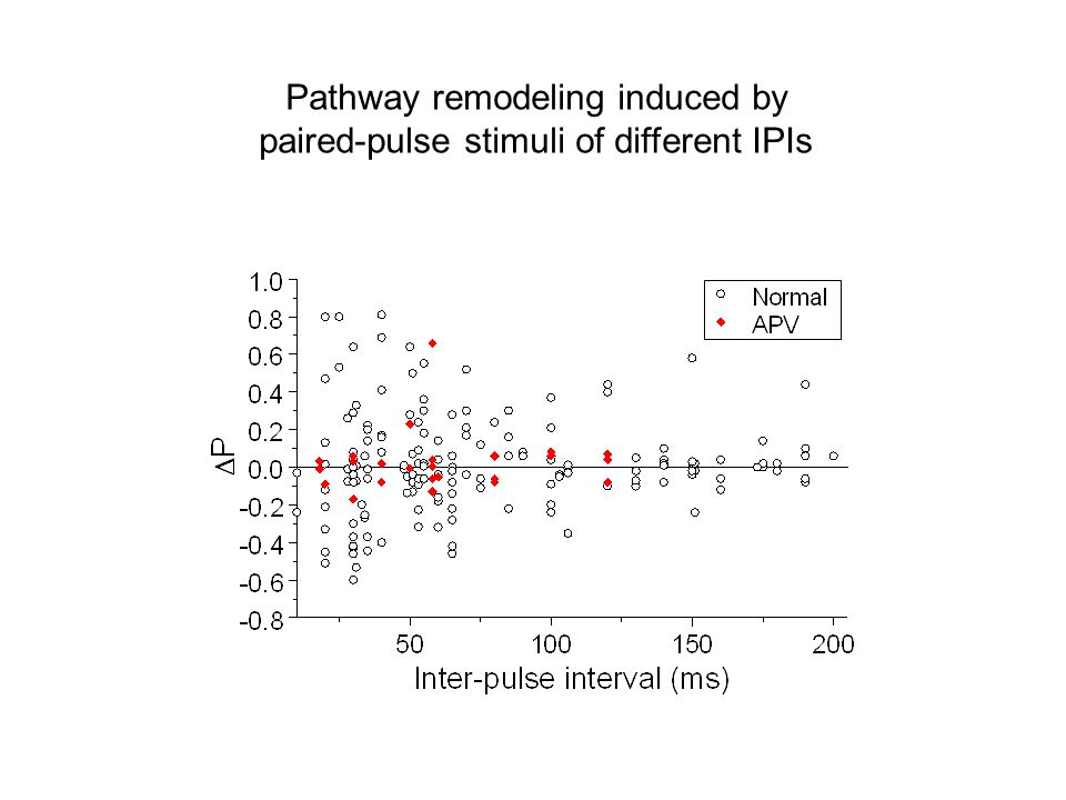 Pathway remodeling induced by paired-pulse stimuli of different IPIs
