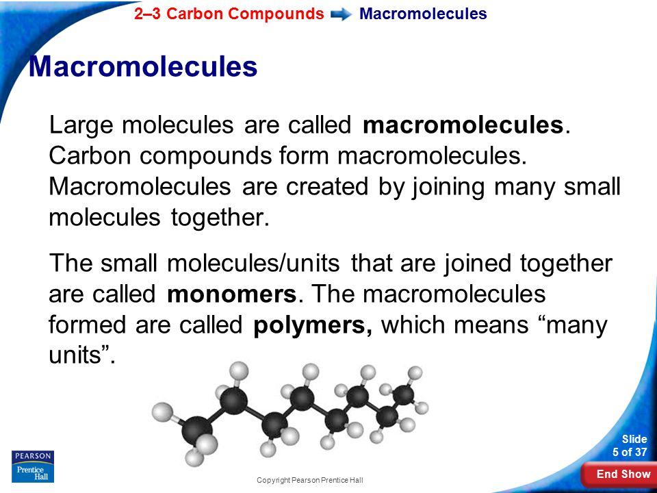 End Show 2–3 Carbon Compounds Slide 5 of 37 Copyright Pearson Prentice Hall Macromolecules Large molecules are called macromolecules.