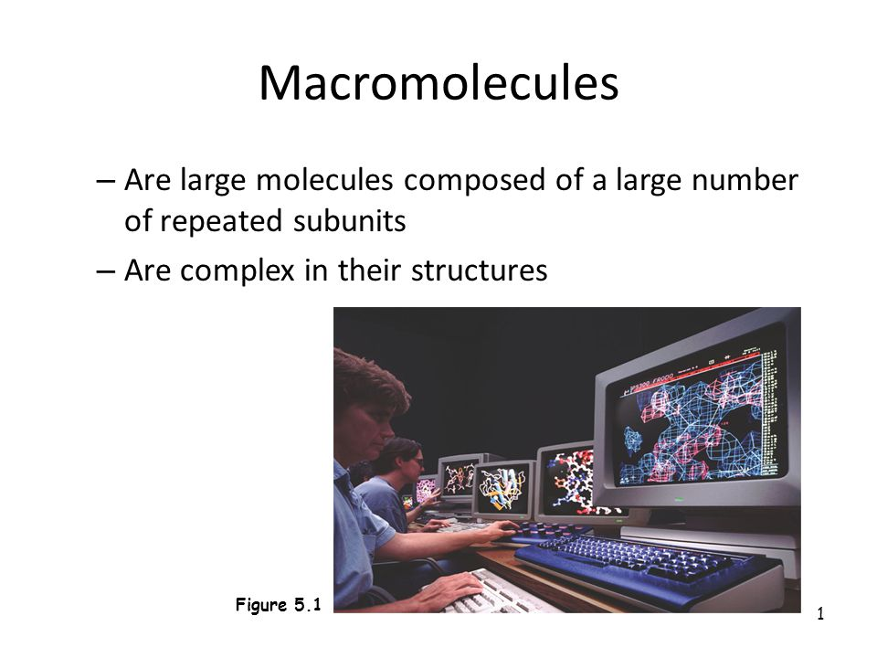 1 Macromolecules – Are large molecules composed of a large number of repeated subunits – Are complex in their structures Figure 5.1