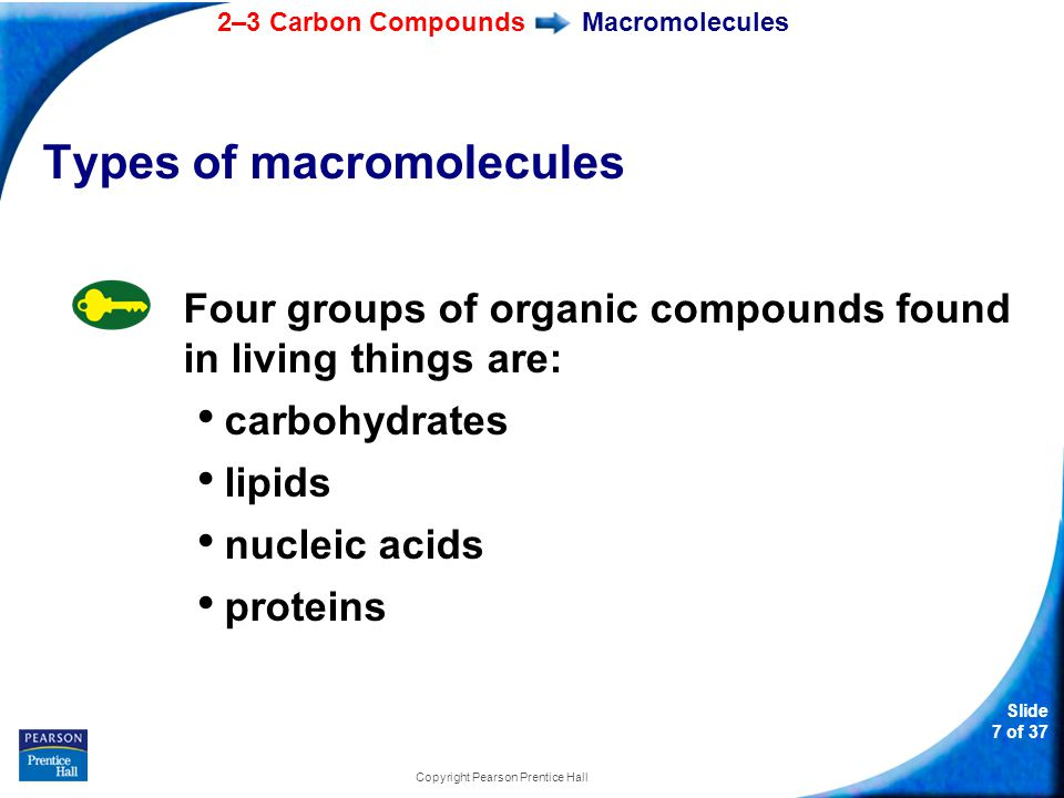 2–3 Carbon Compounds Slide 7 of 37 Copyright Pearson Prentice Hall Macromolecules Types of macromolecules Four groups of organic compounds found in living things are: carbohydrates lipids nucleic acids proteins