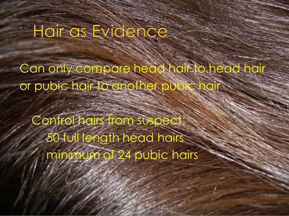 alopecia areata behandlung ayurveda.jpg