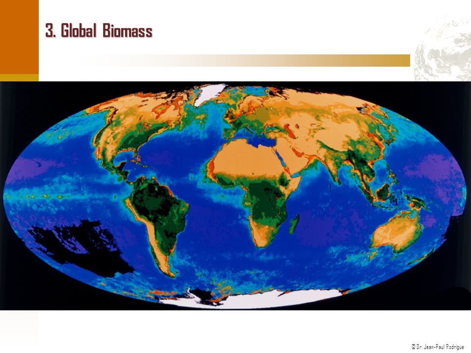 © Dr. Jean-Paul Rodrigue 3. Global Biomass