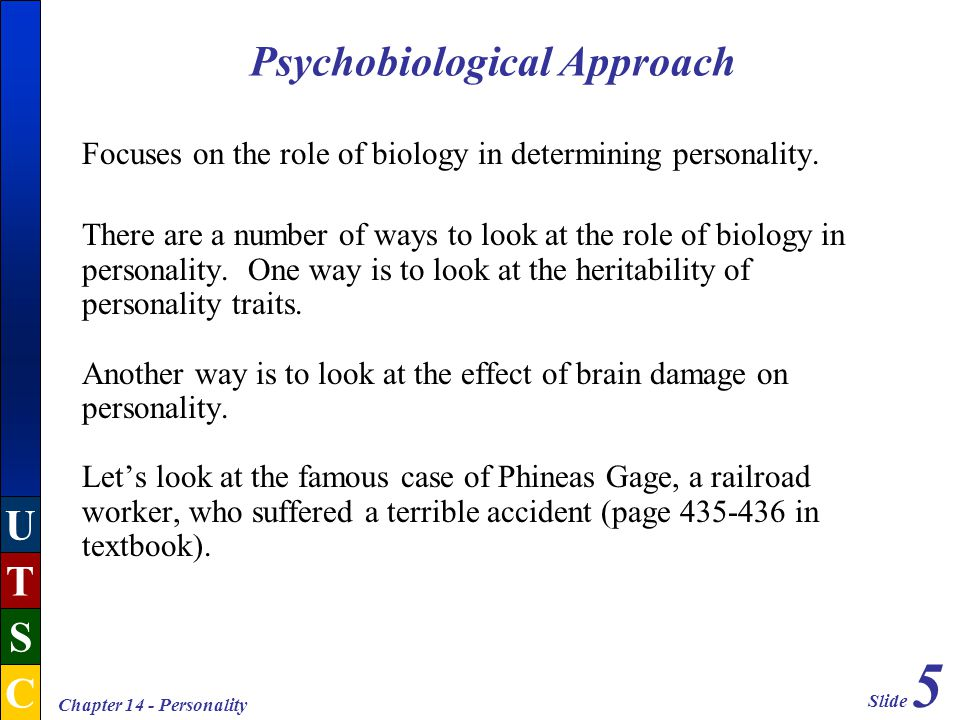 Slide 5 U T S C Chapter 14 - Personality Focuses on the role of biology in determining personality.