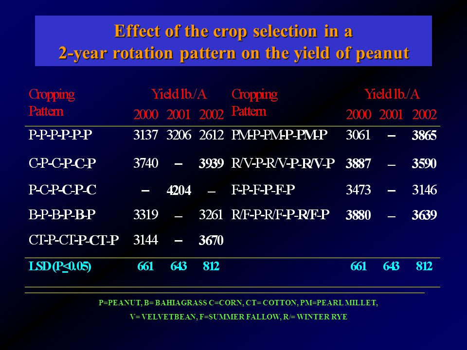 Effect of the crop selection in a 2-year rotation pattern on the yield of peanut P=PEANUT, B= BAHIAGRASS C=CORN, CT= COTTON, PM=PEARL MILLET, V= VELVETBEAN, F=SUMMER FALLOW, R/= WINTER RYE