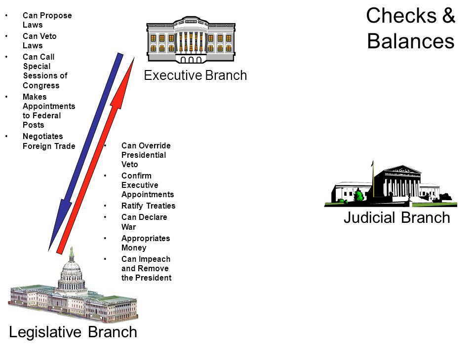 Executive Branch Judicial Branch Legislative Branch Can Propose Laws Can Veto Laws Can Call Special Sessions of Congress Makes Appointments to Federal Posts Negotiates Foreign Trade Can Override Presidential Veto Confirm Executive Appointments Ratify Treaties Can Declare War Appropriates Money Can Impeach and Remove the President Checks & Balances