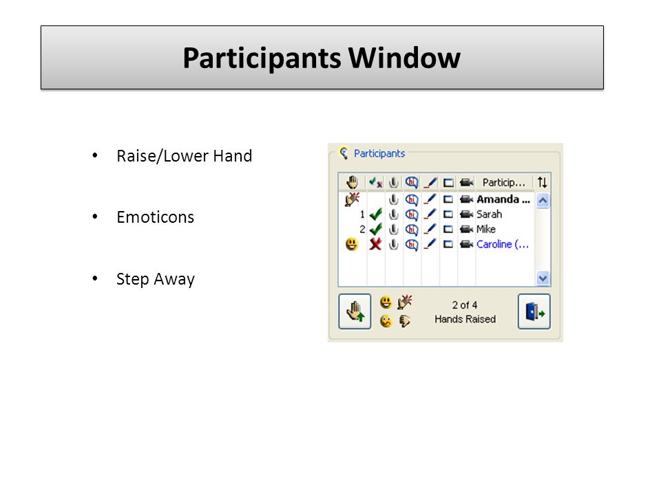 Participants Window Raise/Lower Hand Emoticons Step Away