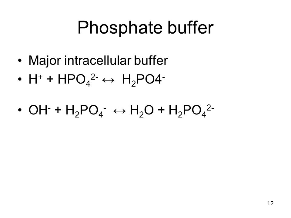 12 Phosphate buffer Major intracellular buffer H + + HPO 4 2- ↔ H 2 PO4 - OH - + H 2 PO 4 - ↔ H 2 O + H 2 PO 4 2-