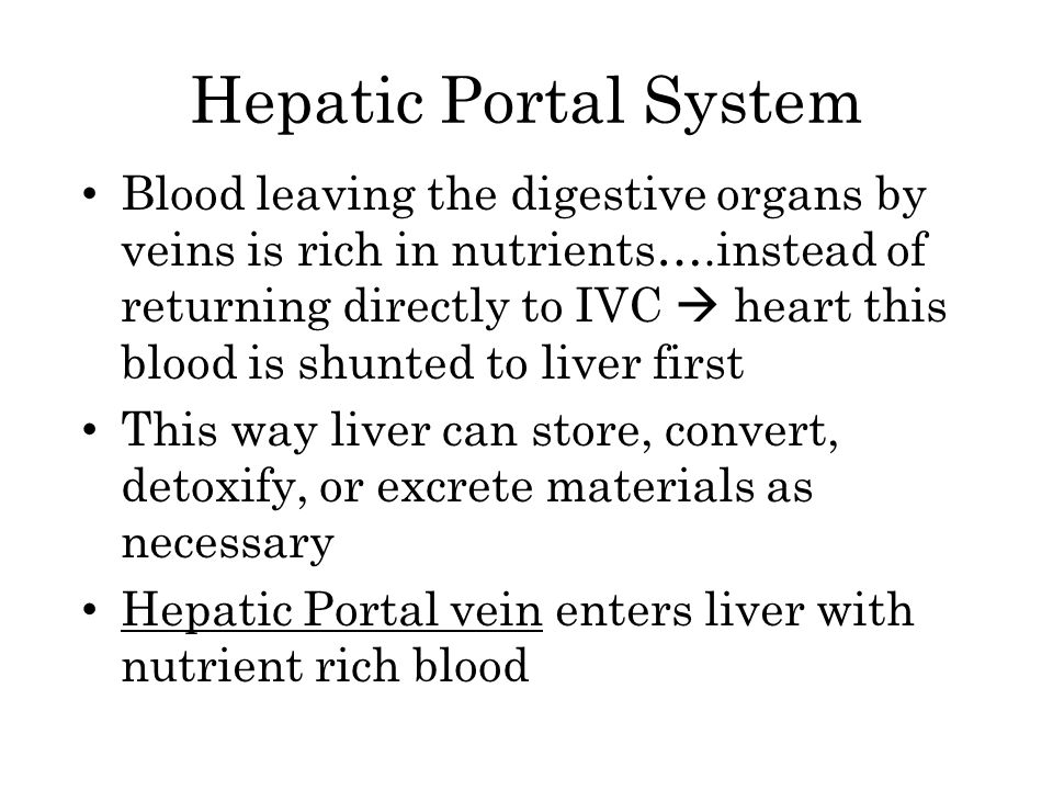 Hepatic Portal System Blood leaving the digestive organs by veins is rich in nutrients….instead of returning directly to IVC  heart this blood is shu