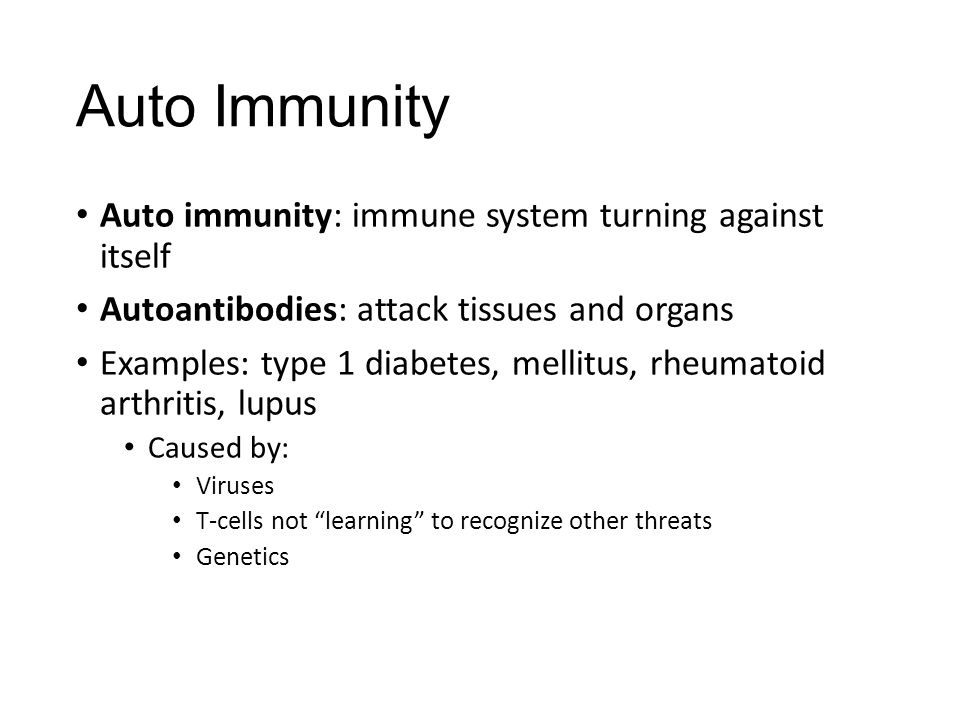 Auto Immunity Auto immunity: immune system turning against itself Autoantibodies: attack tissues and organs Examples: type 1 diabetes, mellitus, rheumatoid arthritis, lupus Caused by: Viruses T-cells not learning to recognize other threats Genetics