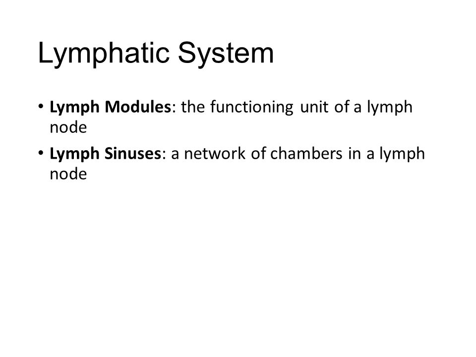 Lymphatic System Lymph Modules: the functioning unit of a lymph node Lymph Sinuses: a network of chambers in a lymph node