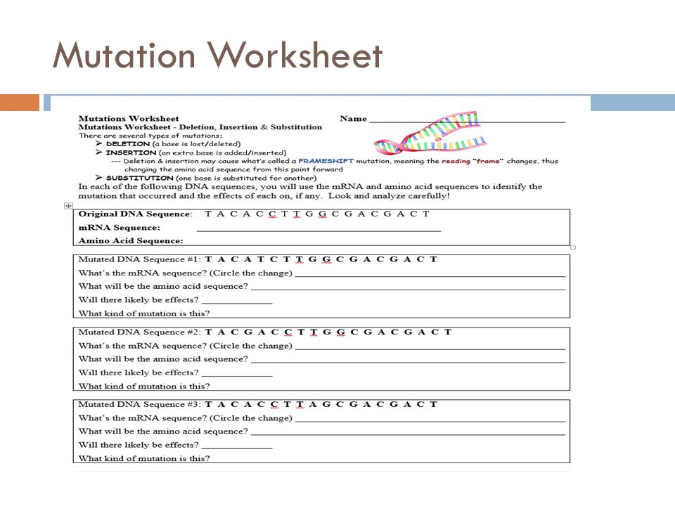 Unit 8 Molecular Genetics and Biotechnology Main Idea DNA codes – Gene Mutation Worksheet