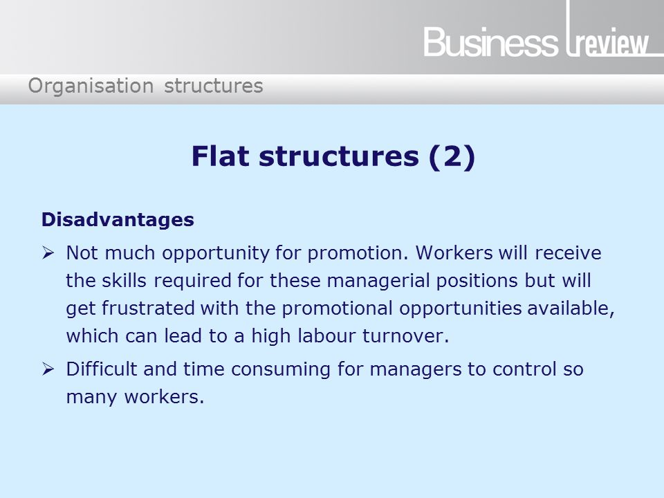 Organisation structures Flat structures (2) Disadvantages  Not much opportunity for promotion.