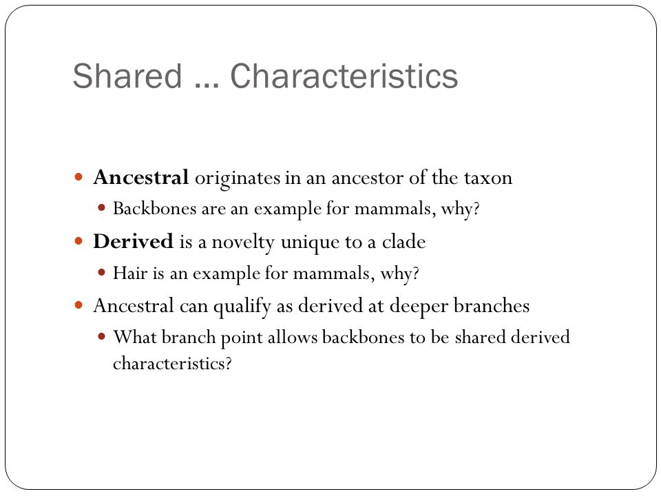 Shared … Characteristics Ancestral originates in an ancestor of the taxon Backbones are an example for mammals, why.