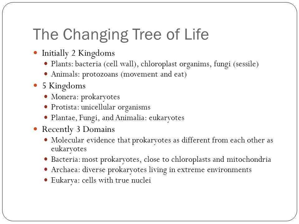 The Changing Tree of Life Initially 2 Kingdoms Plants: bacteria (cell wall), chloroplast organims, fungi (sessile) Animals: protozoans (movement and eat) 5 Kingdoms Monera: prokaryotes Protista: unicellular organisms Plantae, Fungi, and Animalia: eukaryotes Recently 3 Domains Molecular evidence that prokaryotes as different from each other as eukaryotes Bacteria: most prokaryotes, close to chloroplasts and mitochondria Archaea: diverse prokaryotes living in extreme environments Eukarya: cells with true nuclei