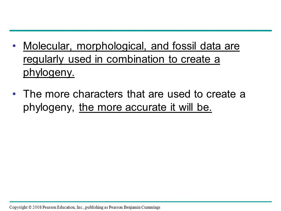 Copyright © 2008 Pearson Education, Inc., publishing as Pearson Benjamin Cummings Molecular, morphological, and fossil data are regularly used in combination to create a phylogeny.