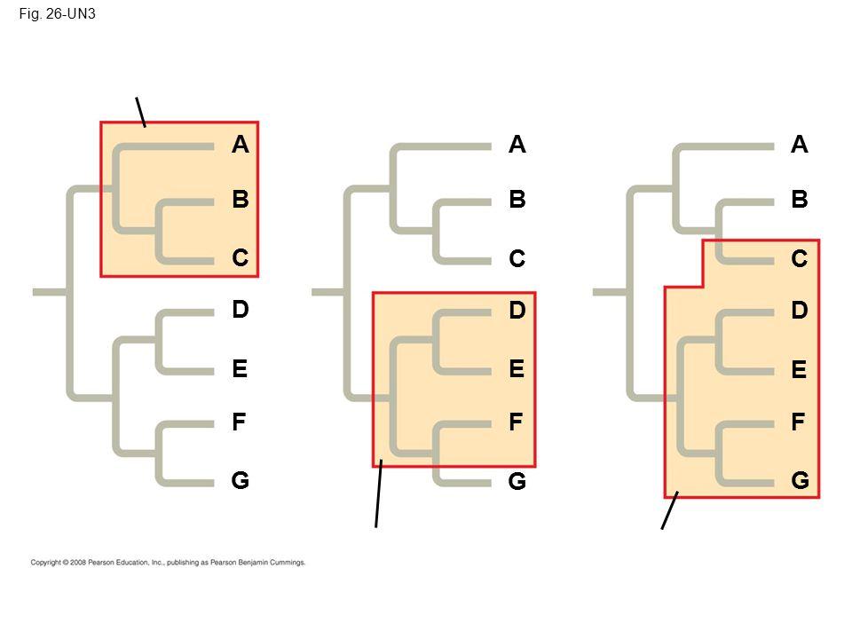 Fig. 26-UN3 F Polyphyletic group E D C B A G AA BB C C D D E E F F GG