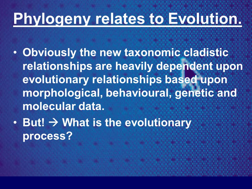 Phylogeny relates to Evolution.