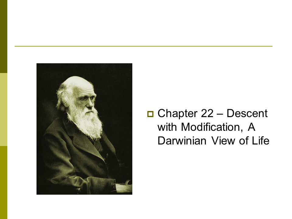  Chapter 22 – Descent with Modification, A Darwinian View of Life