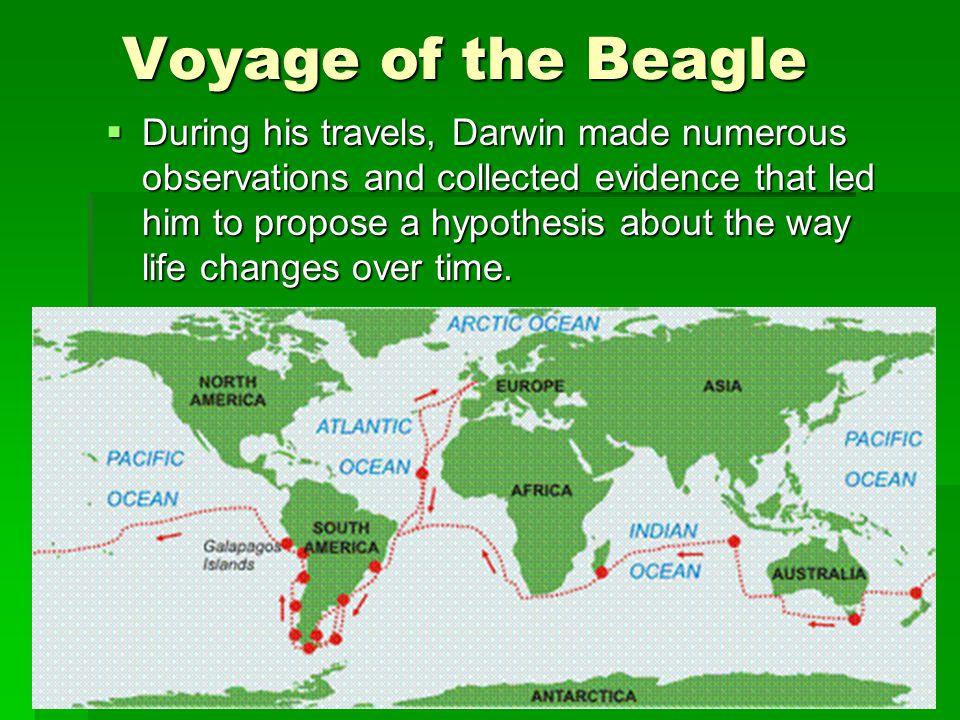 Voyage of the Beagle  During his travels, Darwin made numerous observations and collected evidence that led him to propose a hypothesis about the way life changes over time.
