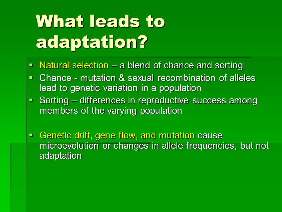 What leads to adaptation.