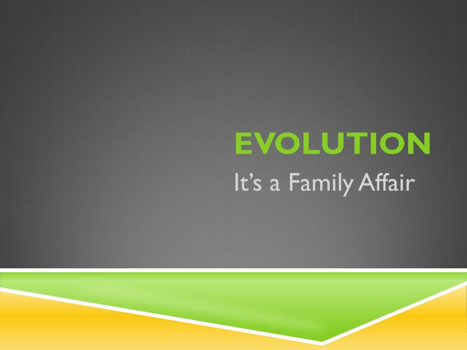 1 EVOLUTION It's a Family Affair