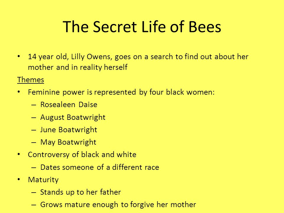 the secret life of bees analysis essay