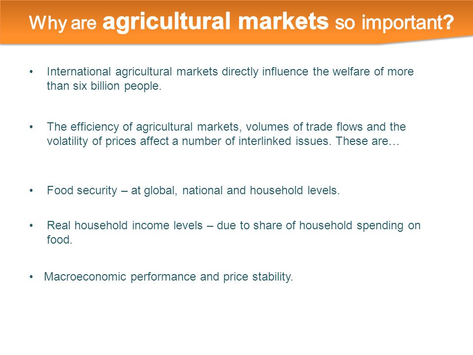International agricultural markets directly influence the welfare of more than six billion people.