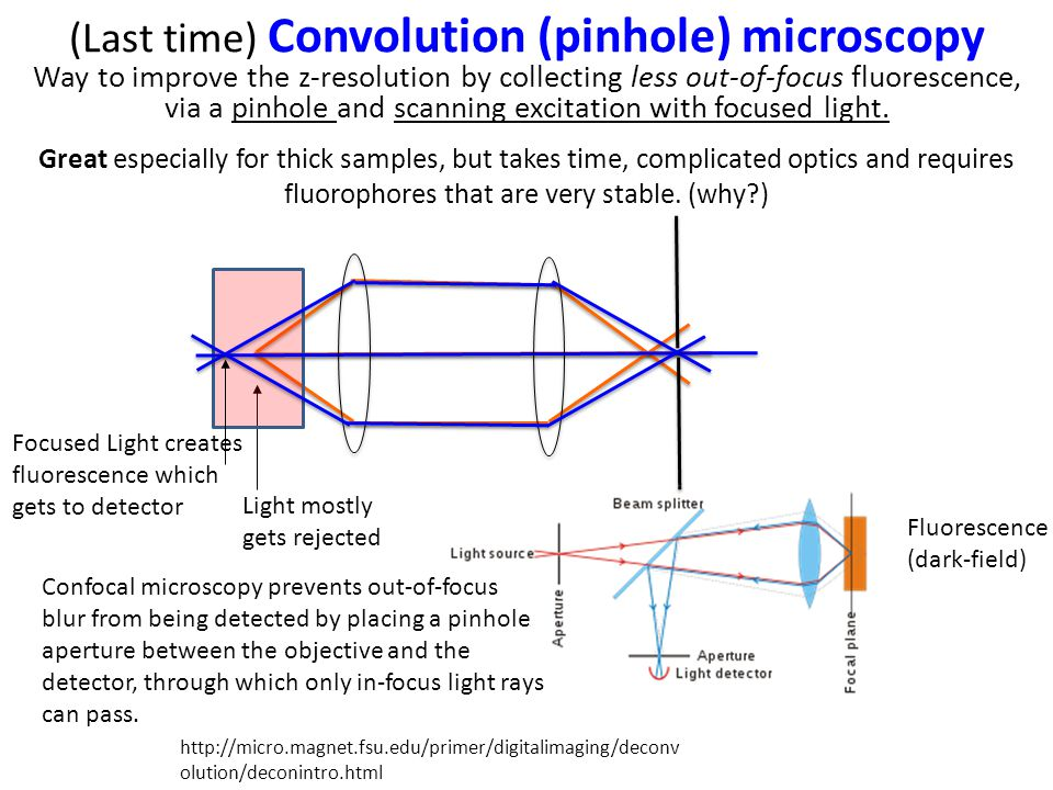 Light mostly gets rejected Focused Light creates fluorescence which gets to detector Fluorescence (dark-field) (Last time) Convolution (pinhole) microscopy Way to improve the z-resolution by collecting less out-of-focus fluorescence, via a pinhole and scanning excitation with focused light.
