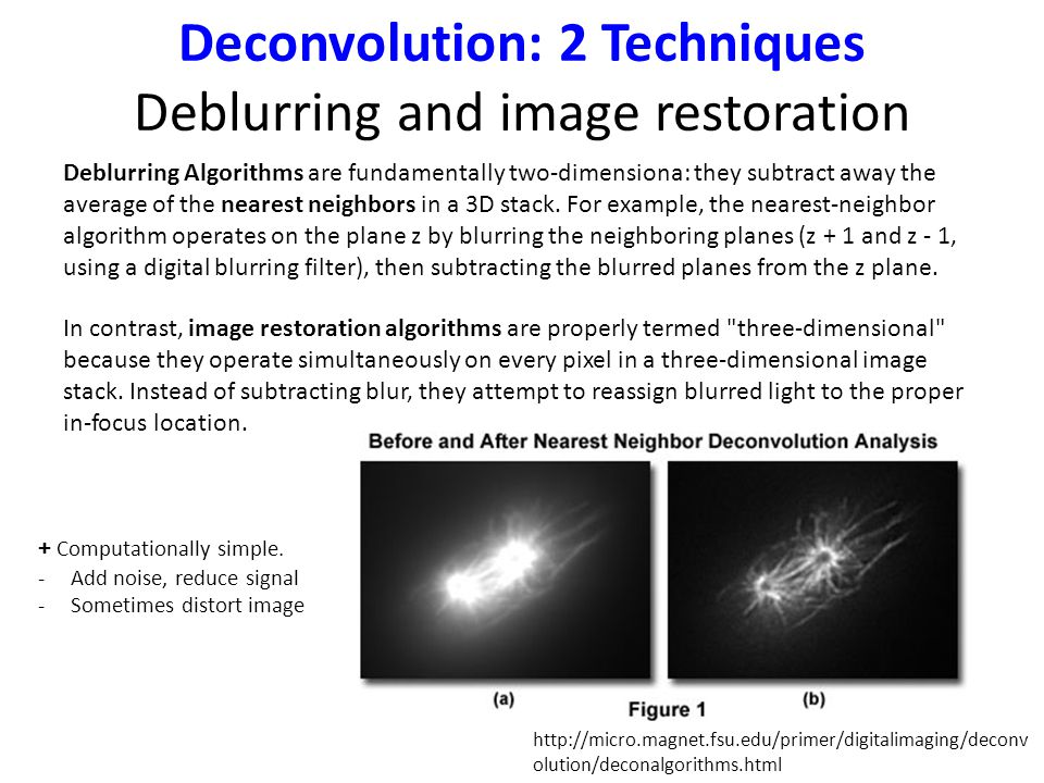 Deconvolution: 2 Techniques Deblurring and image restoration In contrast, image restoration algorithms are properly termed three-dimensional because they operate simultaneously on every pixel in a three-dimensional image stack.