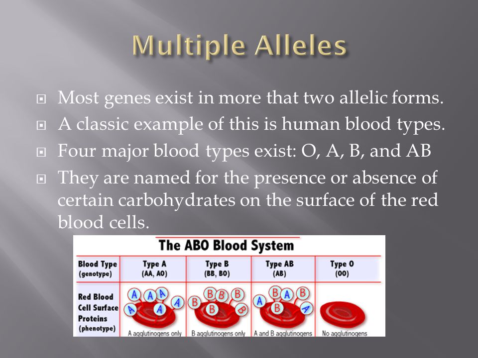  Most genes exist in more that two allelic forms.