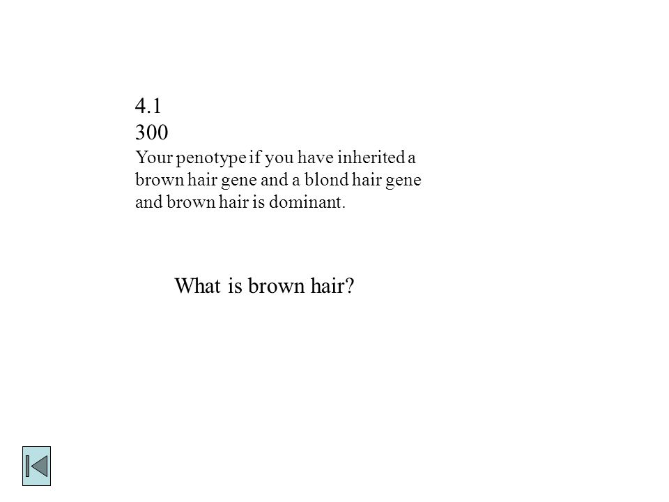Your penotype if you have inherited a brown hair gene and a blond hair gene and brown hair is dominant.