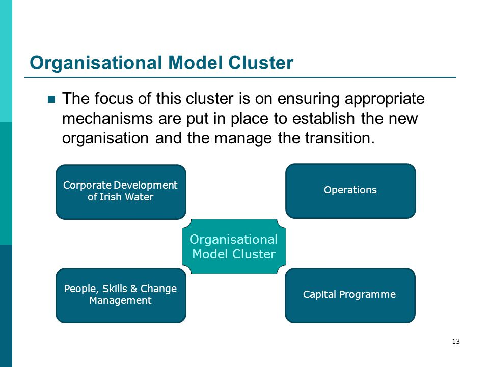 Organisational Model Cluster The focus of this cluster is on ensuring appropriate mechanisms are put in place to establish the new organisation and the manage the transition.
