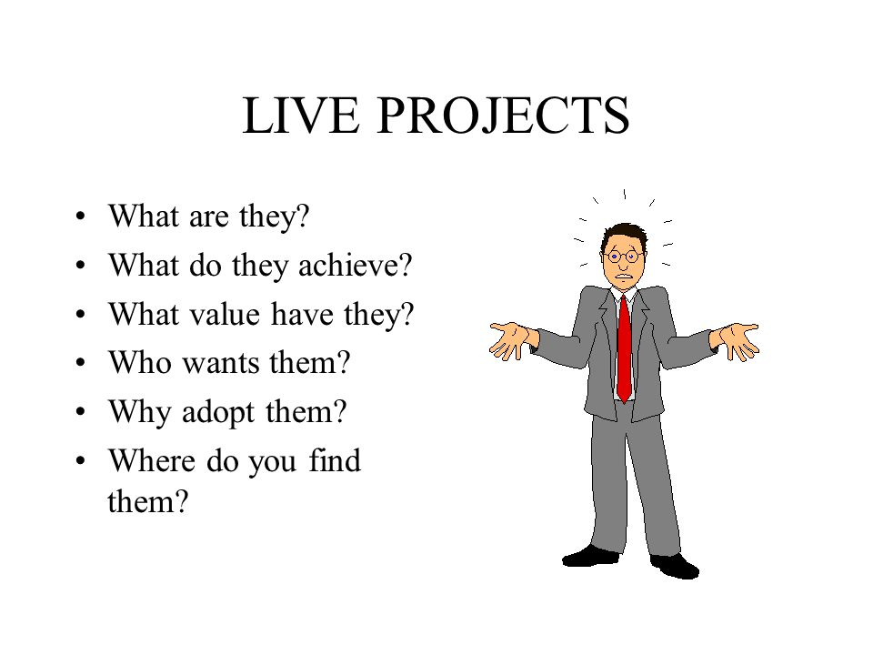 LIVE PROJECTS What are they. What do they achieve.