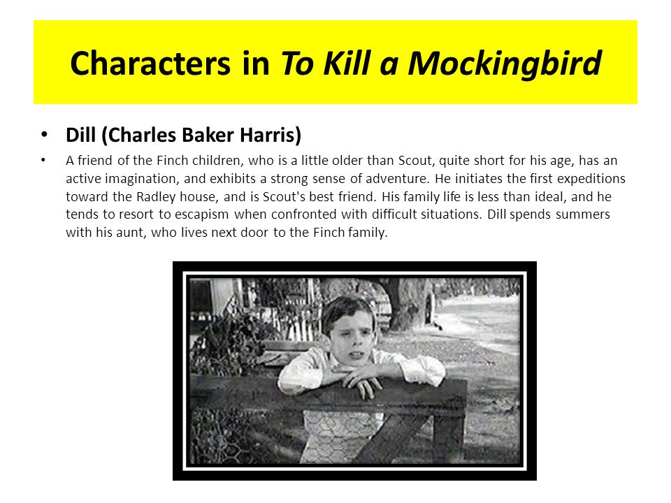 to kill a mockingbird study To kill a mockingbird study guide student name: taking a stand have you ever spoken out against injustice, even when it angered others this image from the.