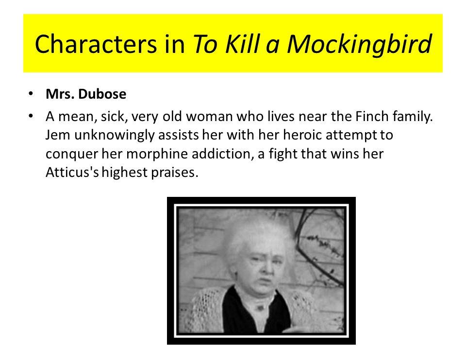 to kill a mockingbird jem and